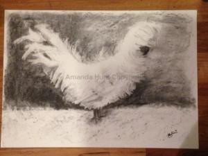 Amanda Hunt charcoal2
