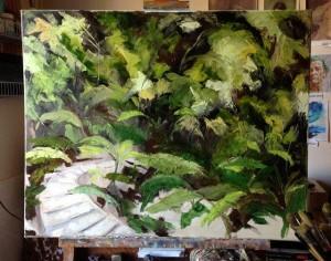 Amanda Hunt rainforest1