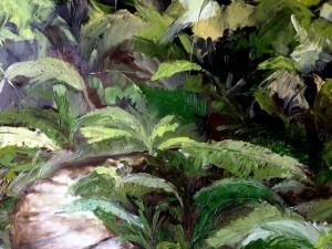 Amanda Hunt rainforest3