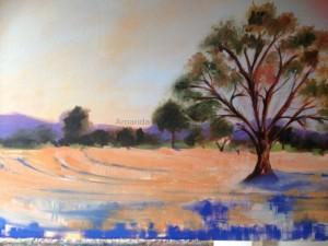 Amanda Hunt landscape