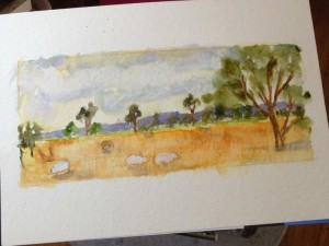 Amanda Hunt landscape3