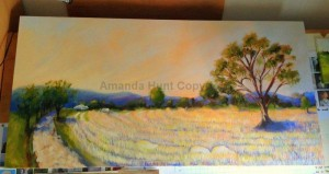 Amanda Hunt wheat1