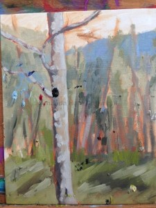 Amanda Hunt pleinair5